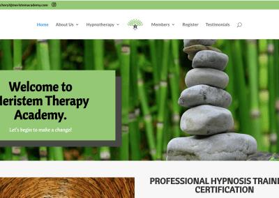 Meristem Therapy Academy